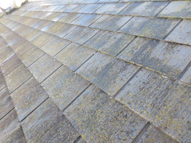 神奈川県海老名市 Ⅰ様邸 外壁塗装・屋根塗装工事が完工しました