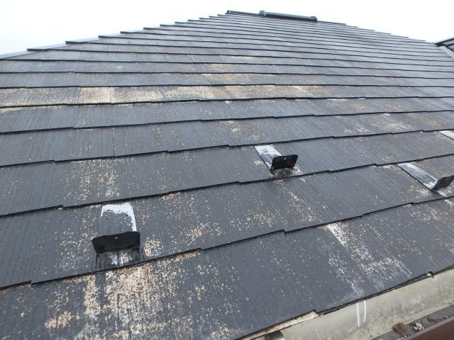 千葉県大網白里市 外壁塗装・屋根塗装・シーリング工事ビフォア写真